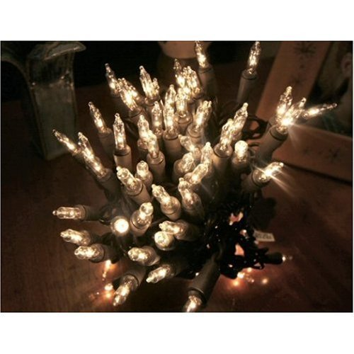 100 MINI Lights Brown Wire, Clear bulbs 22 Feet