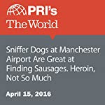 Sniffer Dogs at Manchester Airport Are Great at Finding Sausages. Heroin, Not So Much | Shirin Jaafari