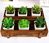 Amgate 2 PCS Rustic Rectangular Wooden Planter Plant Container Box