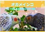 オカメインコ 鳥A4写真カレンダー2014~いやしの とり おかめ