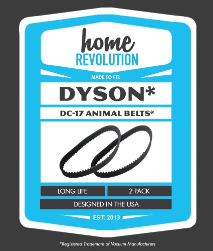 How To Clean A Dyson Animal Vacuum front-637642