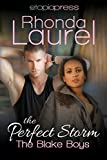 The Perfect Storm (The Blake Boys Book 6)