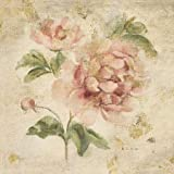 Coral Rose On Antique Linen Light Gold By Blum, Cheri - Fine Art Print On PAPER : 12 X 12 Inches