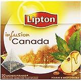 Lipton Infusion Canada Pomme Sirop d'érable 20 sachets - Lot de 3