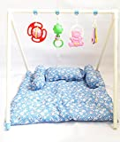 Sunny Baby Bed & Gym with Mosquito Net for Kids & Baby (Sky Blue)