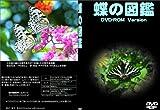 ≪ 蝶の図鑑 DVD ~日本の蝶200種以上を写真で紹介する生態電子図鑑~ ≫