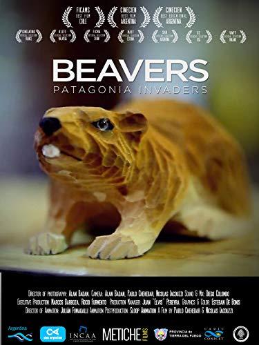 Beavers: Patagonia invaders