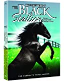 The Adventures of the Black Stallion: Season 3