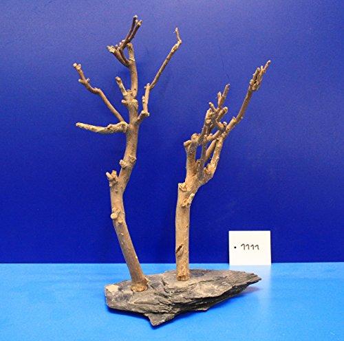 Eau-Flora-2-Fein-Dcor-en-sapin-sur-ardoise-23-x-29-x-12-1111-sur-plateau-ardoise