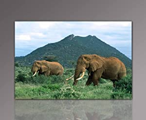 "E: Offer! Mural xxl & favorable state (african_elephants-2-60x90cm/23,6""x35,4"") finished Stretcher Store huge in pictures. Poster design mural with a wooden frame. Ideas for affordable housing set up. Cheaper than oil painting or posters with picture fram"