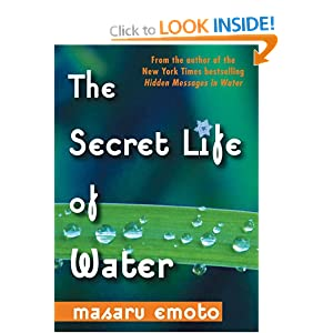 the secret life of water by emoto essay Dr masaru emoto discovered that crystals formed in frozen water reveal changes   dr emoto has been called to lecture around the world as a result and has.