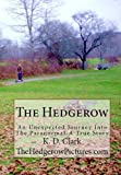 The Hedgerow: An Unexpected Journey Into The Paranormal