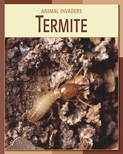 termite-21st-century-skills-library-animal-invaders