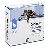 DRONCIT Spot on Lösung Pipetten für Katzen 2 ml Lösung