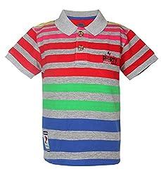 Vitamins Boys' T-Shirt (08Tb-408-2-Grey Melange_Grey_2 - 3 Years)