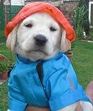 Hunde Regenmantel Regenjacke Regenschutz Regencape Jacke Mantel Kapuze M
