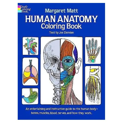Human Anatomy Colouring Book Amazoncouk Margaret Matt
