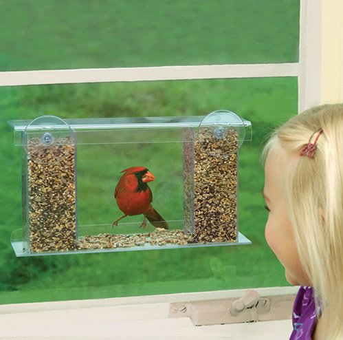Best Awesome Window Bird Feeders with Suction Cups - cover