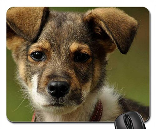 innocent-life-mouse-pad-mousepad-dogs-mouse-pad