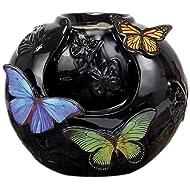 Fountain Butterfly