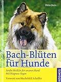 Bach-Blüten für Hunde: Sanfte Medizin für unseren Hund Mit Diagonose-Bogen