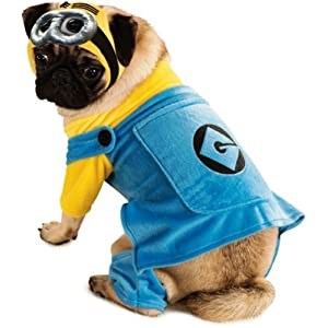 Despicable Me Minion Pet Costume, Small