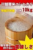 埼玉県産 白米 コシヒカリ 10kg (5kg×2) 川越蔵米 (未検査米) 平成27年産