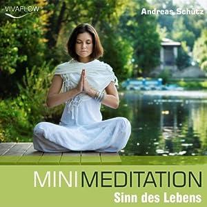 Mini Meditation: Sinn des Lebens Hörbuch