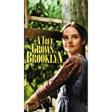 A Tree Grows In Brooklyn (1945)by Dorothy McGuire