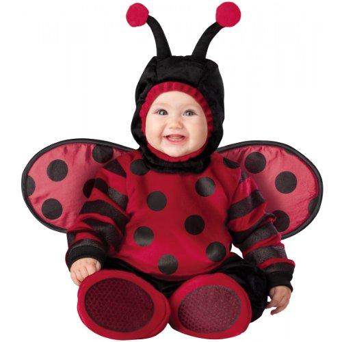 Itty Bitty Lady Bug Costume - Infant Medium front-468962