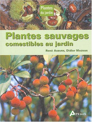 Plantes sauvages comestibles au jardin