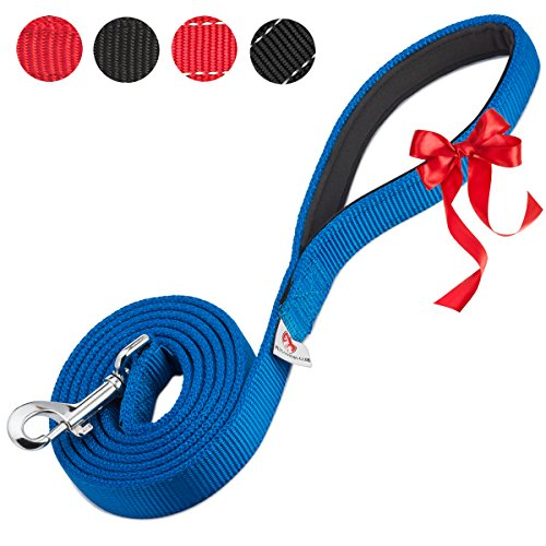 petslovers-2-layer-dog-leash-extra-durable-webbing-padded-handle-6-feet-long-1-inch-wide