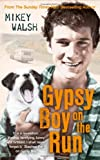 Mikey Walsh Gypsy Boy on the Run