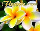 Hawaiian 16 Month Trade Calendar Flowers of Hawaii 2014