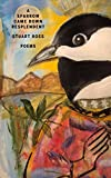 img - for Sparrow Came Down Resplendent, A book / textbook / text book