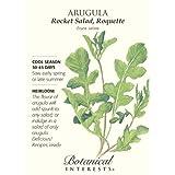 Arugula Rocket Salad Seed