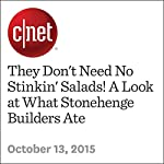 They Don't Need No Stinkin' Salads! A Look at What Stonehenge Builders Ate | Danny Gallagher