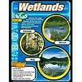 Wetlands Chart