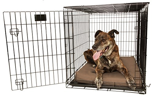 """Orthopedic 4"""" Dog Crate Pad - Waterproof & Tear Resistant - For Crates 48 X 30 front-443235"""