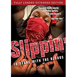 Slippin: 10 Years With the Bloods