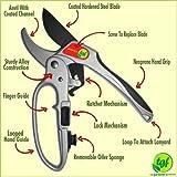 Pruners, Ratchet Pruning Shears, Garden Tool, For Weak Hands, Best Gardening Gift, Anvil Style