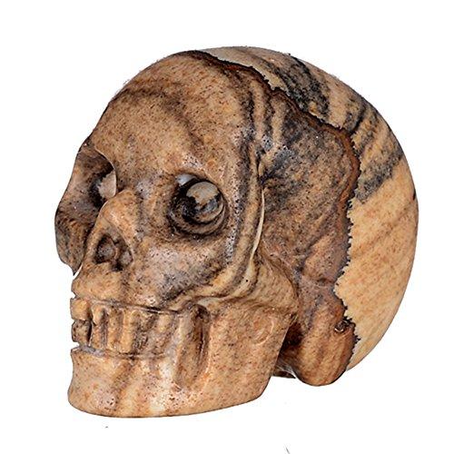 "Mineralbiz 1.5"" Natural Picture Jasper Hand Carved Crystal Skull, Crystal Human Skull Head, Crystal Healing Reiki"
