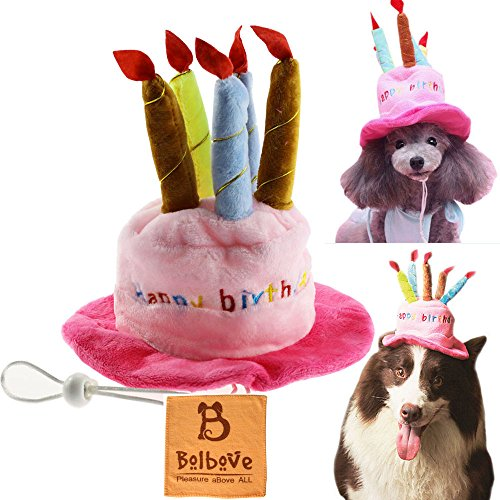 BroBear Dog Birthday Hat With Cake Candles Design