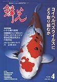 鱗光 (2004-4月号)