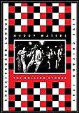 ライヴアットザチェッカーボードラウンジシカゴ 1981初回限定盤DVD2CD日本語字幕付