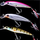 Jerkbait Minnow Bass Hard Fishing Lure Floating Artificial Bait & Feather Hook