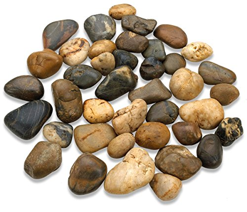 2 Pounds Large Decorative River Rock Stones - Natural Polished Mixed Color Stones -Use In Glassware, Like Vases, Aquariums And Terrariums To Enhance The Appearance, - By Katzco (Fish Tank Stones compare prices)
