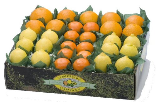 Citrus Gift Box