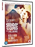 Splendour In The Grass [Import anglais]