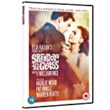 Splendor In The Grass [DVD] [1961]by William Inge